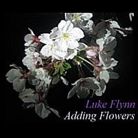 Luke Flynn | Adding Flowers