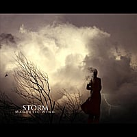 Magnetic Wind | Storm