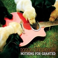 Marc Feldman | Nothing For Granted (feat. Dave Gaudet)