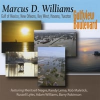 Marcus D. Williams | Gulfview Boulevard