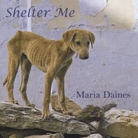 Maria Daines | Shelter Me