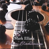 Mark Elliott | Pickin' Blackberries