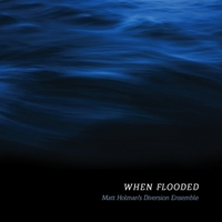 Matt Holman's Diversion Ensemble | When Flooded
