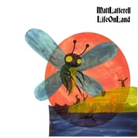 Matt Latterell | Life on Land