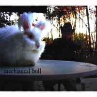 Mechanical Bull | Songs to get Divorced to