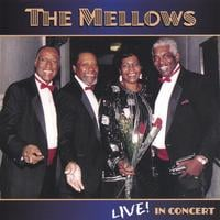 The Mellows | Live!