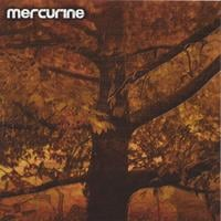 Mercurine | Waiting For Another Fall