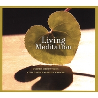 Music for Deep Meditation | Living Meditation: Guided Meditations with David Harshada Wagner