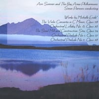 Michelle Ende'/The Bay Area Philharmonic/Ann Sumner: Soloist | The Violin Concerto No. 1 And Other Works