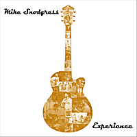 Mike Snodgrass | Experience