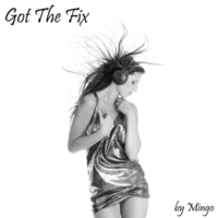 Mingo | Got the Fix