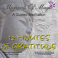 Moments of Magic | 12 Minutes of Gratitude (A Guided Meditation to Help You Have a Great Day)