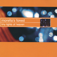 Morella's Forest | Tiny Lights of Heaven