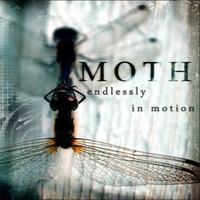 Moth | Endlessly in Motion