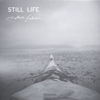 Mother Falcon | Still Life