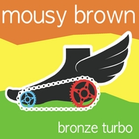 Mousy Brown | Bronze Turbo