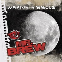 MR Brew | Waxing Gibbous