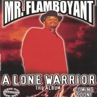 Mr. Flamboyant | A Lone Warrior