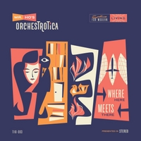 Mr. Ho's Orchestrotica | Where Here Meets There