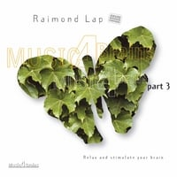 Raimond Lap | Music 4 Brains, Vol. 3
