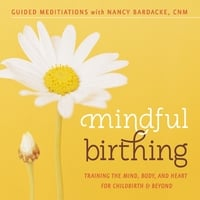 Nancy Bardacke | Mindful Birthing: Training the Mind, Body and Heart for Childbirth and Beyond (Guided Meditations)