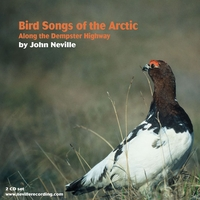 John Neville | Bird Songs of the Arctic-Along the Dempster Highway