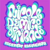 Nicole D'amico and Friends | Electric Elements