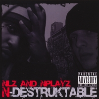 NLZ and NPLAYZ | N-DESTRUKTABLE