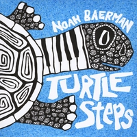 Noah Baerman | Turtle Steps