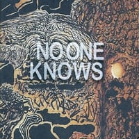 No One Knows | Almost Sound