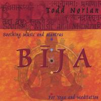 Todd Norian | Bija: Soothing Music and Mantras