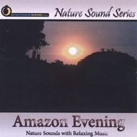 Nature Sound Series | Amazon Evening (With relaxing music)
