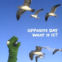 Opposite Day | What is is?