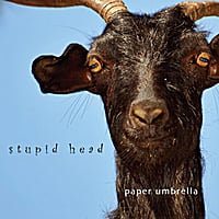 Paper Umbrella | Stupid Head