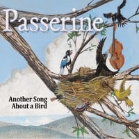 Passerine | Another Song About a Bird