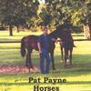 Pat Payne: Horses