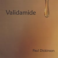 Paul Dickinson | Validamide