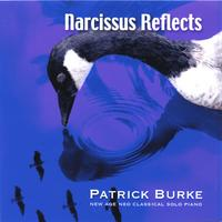 Patrick Burke | Narcissus Reflects