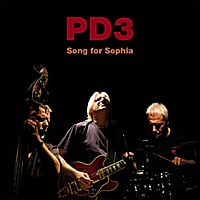 PD3 (Pete Downes Trio) | Song for Sophia