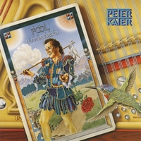 Peter Kater | The Fool & The Hummingbird