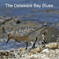 Phil Hoose | The Delaware Bay Blues
