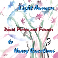 David Picton | Light Answers To Heavy Questions