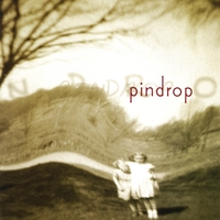 Pindrop | pin drop