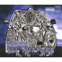 "PLAYBOY W. | ""ALL PURPOSE"" DOUBLE DISC"