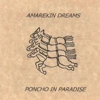 Poncho in Paradise | Amarekin Dreams