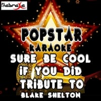 Popstar Karaoke | Sure Be Cool If You Did (A Tribute to Blake Shelton)
