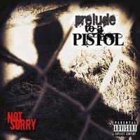 Prelude to a Pistol | Not Sorry