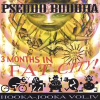 Pseudo Buddha | 3 Months in Fat City