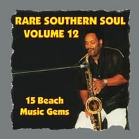 Various Artists | Rare Southern Soul, Vol. 12 - 15 Beach Music Gems