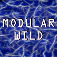 Raul Pena III | Modular Wild (Sounds from Raul's World of Synths)